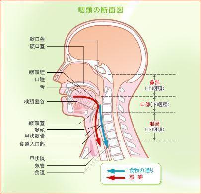 口頭の断面図.JPG